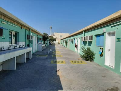 Labour Camp for Rent in Al Quoz, Dubai - HOT DEAL DHS. 800 PER ROOM- FEMALE & MALE ACCOM- 6PERSON CAPACITY