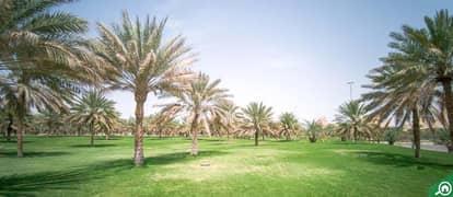 Al Mutawaa