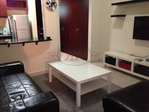 3 Cheques !!! Fully furnished studio vacant in DG